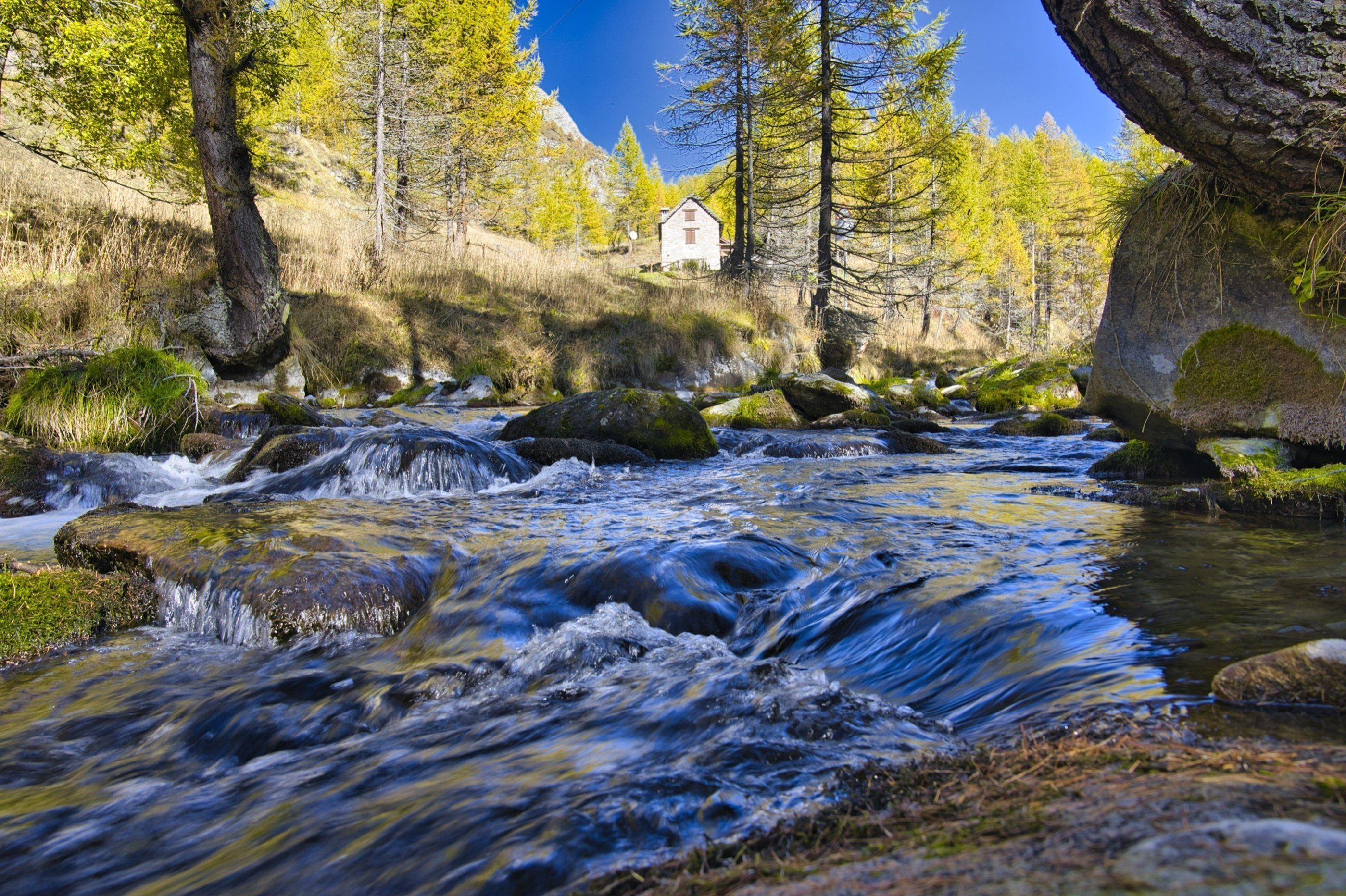 Torrente e foliage autunnale all'Alpe Crampiolo, immersa nel Parco Naturale dell'Alpe Devero